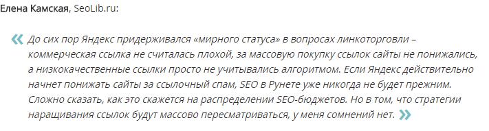 Мнение Елены Камской об алгоритме Яндекса Минусинск