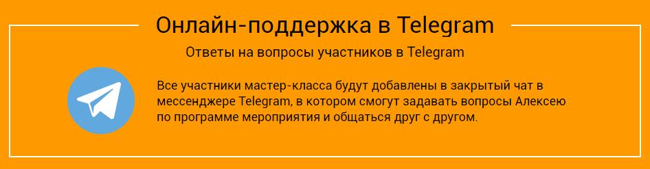 закрытый мастер-класс Алексея Чекушина Продвижение  сайта услуг